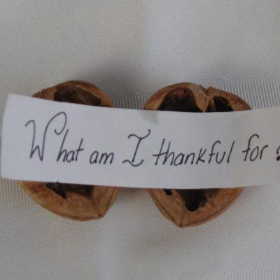 A Thankful Walnut…..