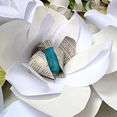 White Magnolia….