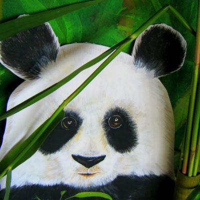 Pandamania…