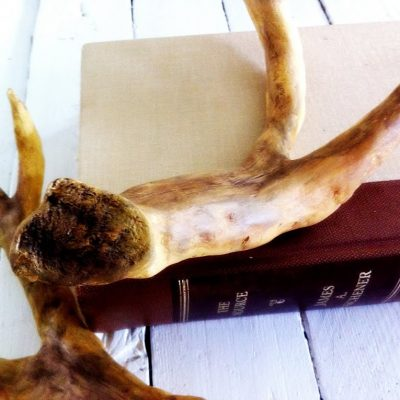 Save a deer….A PB antler inspired tutorial