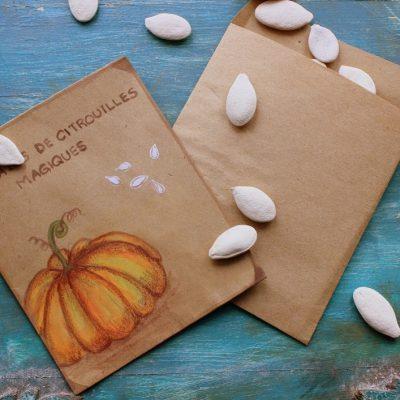 Magic Pumpkin Seeds…