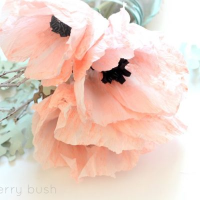Crepe Anemone flower tutorial