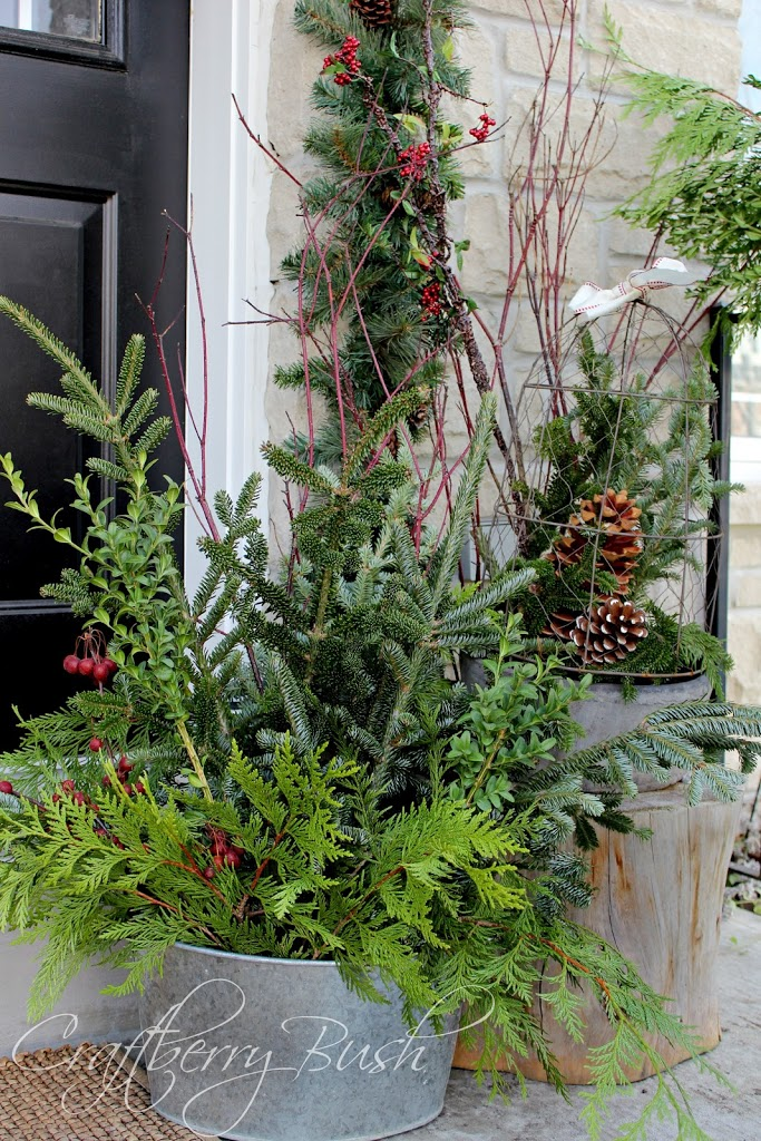 The Front Porch And Helping Christmas Evergreens Last Longer