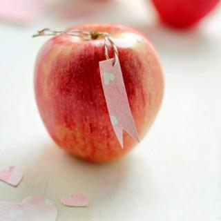 appleofmyeyevalentine-sdaycraftberrybush