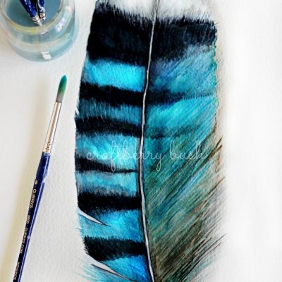 A peek into my sketchbook – a giant Blue Jay feather