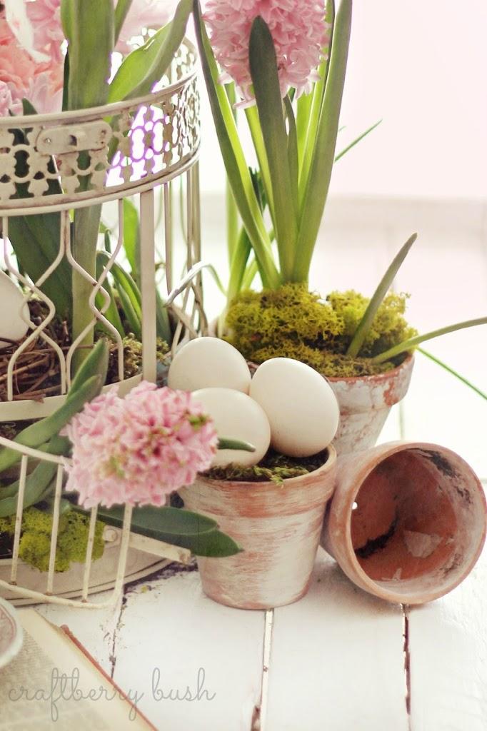 Spring arrangement….
