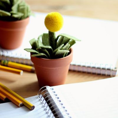 Plant Pot Pencil Holder and Pencil Toppers