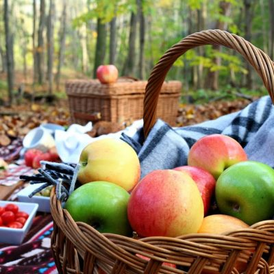 An Autumn Picnic with our New Canon SL1