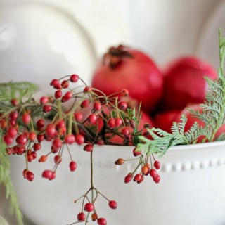 christmashutchberriesinbowlcraftberrybush