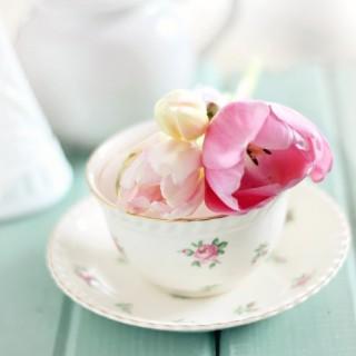 tulipsonteacupcraftberrybush2
