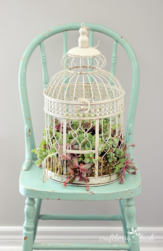 How to plant succulents in a birdcage - Jaulas decoradas vintage ...