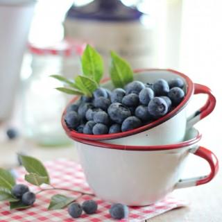 blueberriesinvintageenamelcupscraftberrybush3