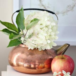 craftberrybushfallvignetteteaser