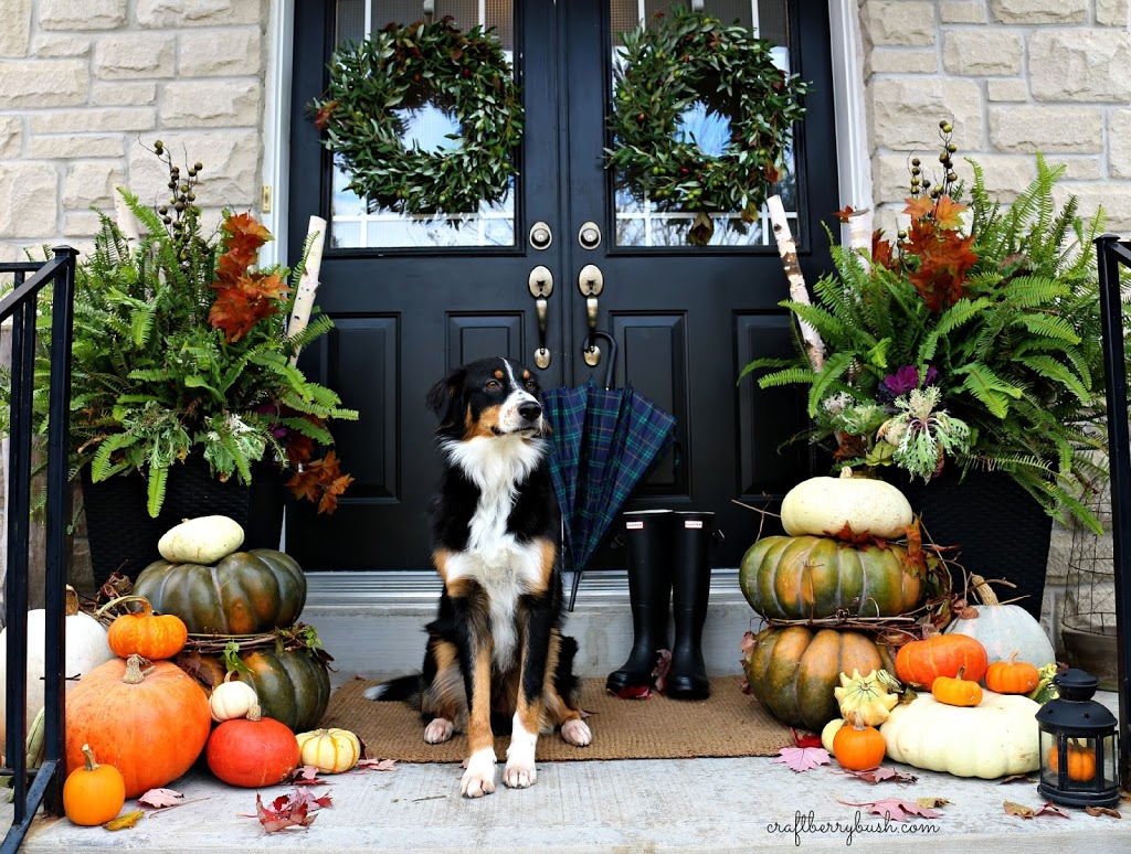 Fall porch 2014 - Fall decorating ideas for front porch ...
