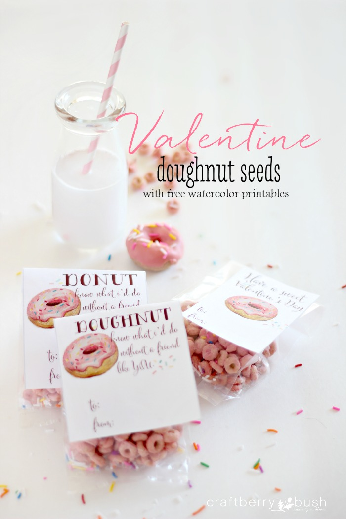 Valentinedoughnutseedscraftberrybush