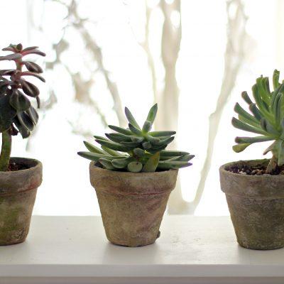 Antique terracotta pots DIY