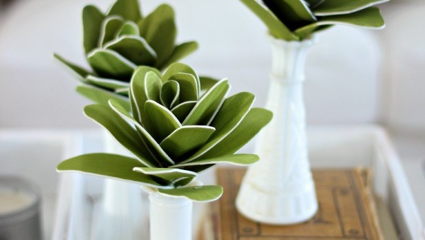 Foam sheet succulent tutorial