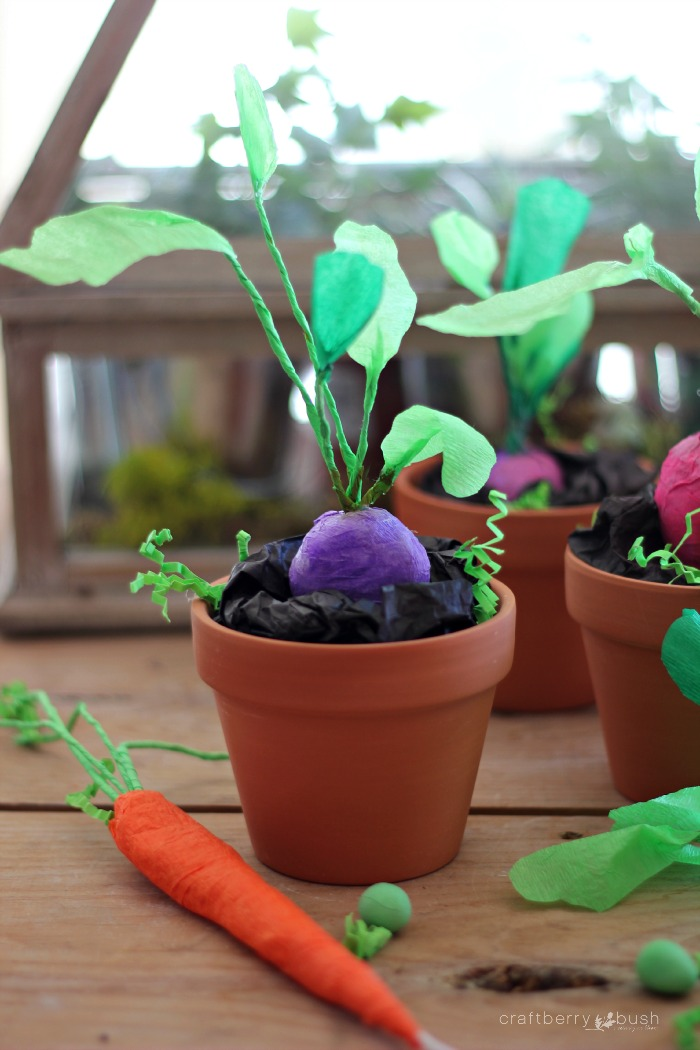 Crepepapervegetablesurpriseballcraftberrybush