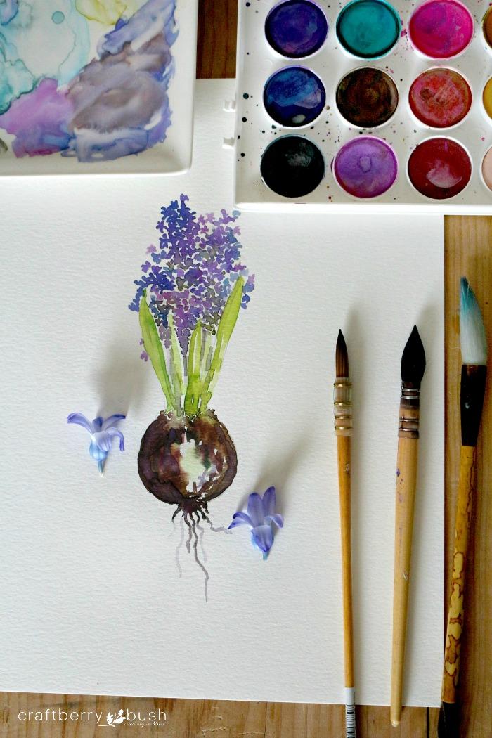 hyacinthwatercolorcraftberrybushwm