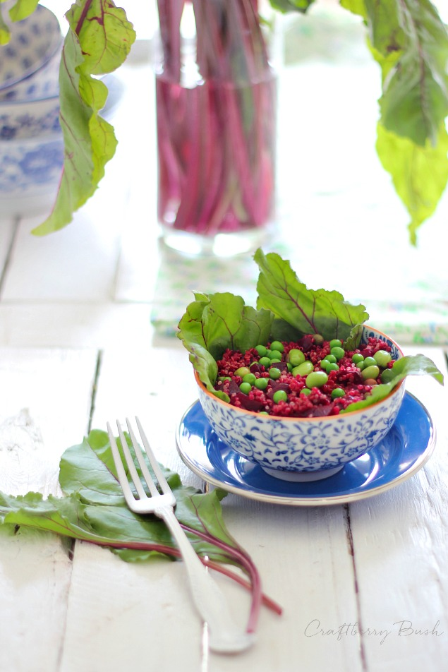 Tastes of Home – Spring Edition: Quinoa Beet Salad