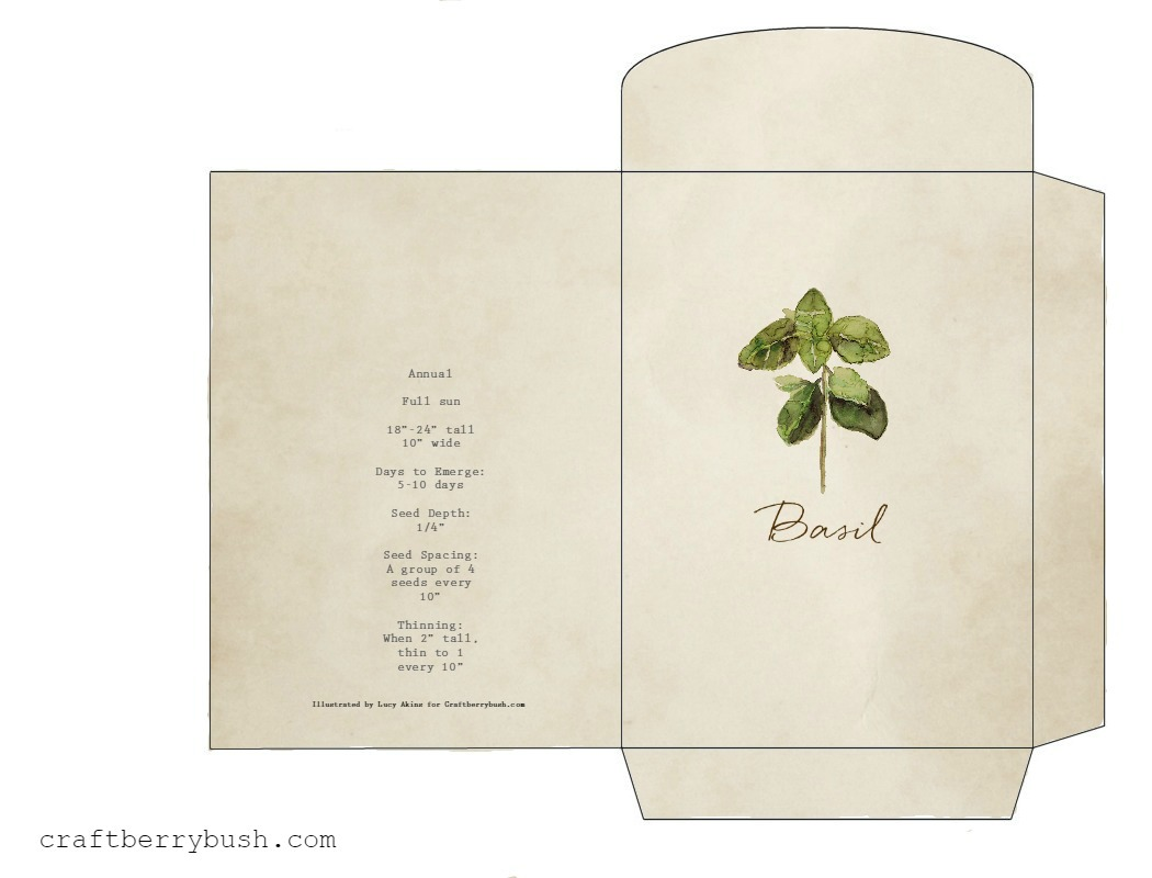 picture regarding Printable Seed Packets named Watercolor herb seed packet printable and reward principle