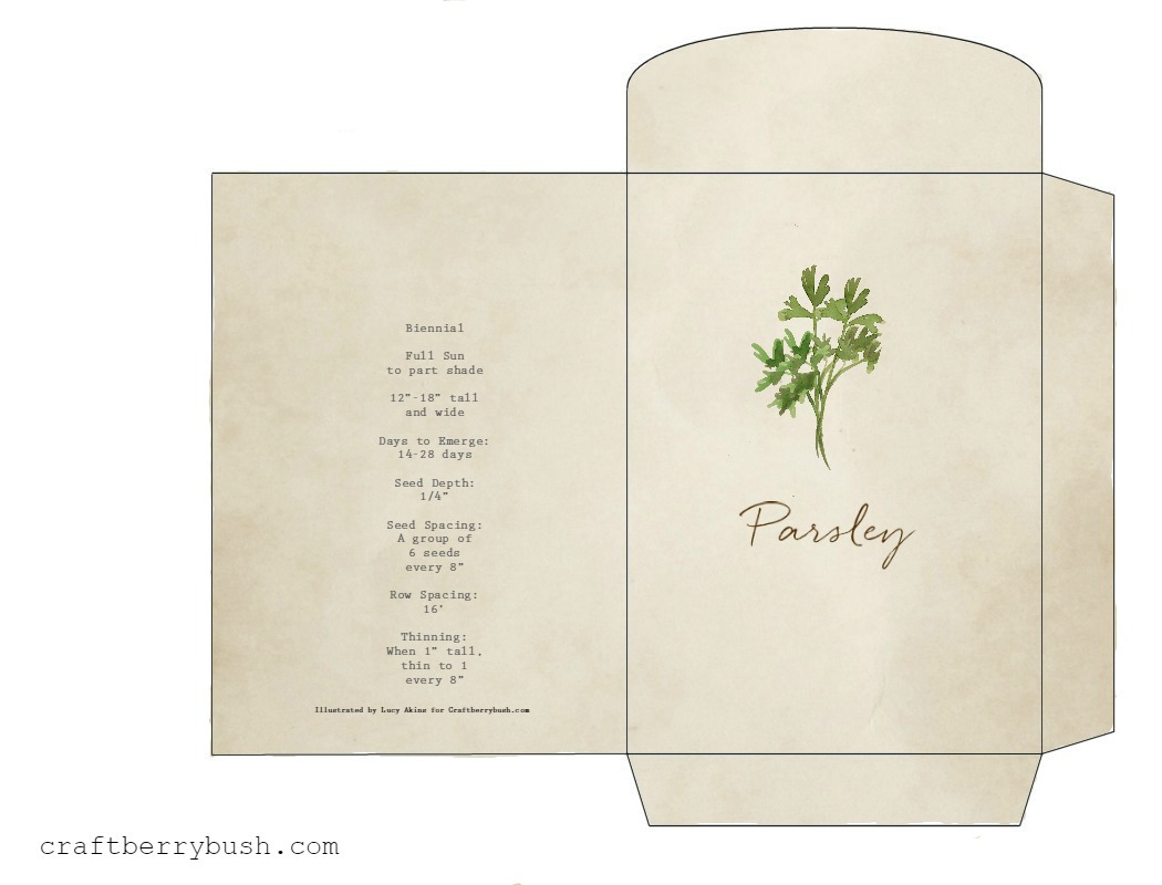 photo about Printable Seed Packets named Watercolor herb seed packet printable and reward notion