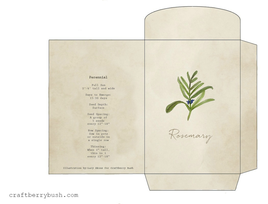 Watercolor Herb Seed Packet Printable And Gift Idea
