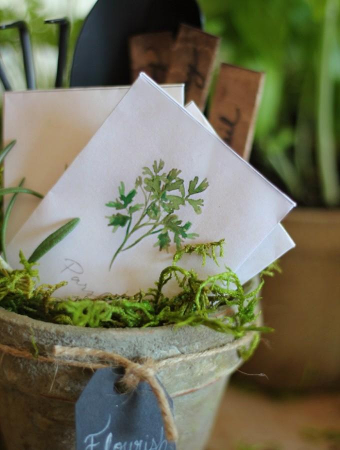 watercolorseedpacketgift2craftberrybush