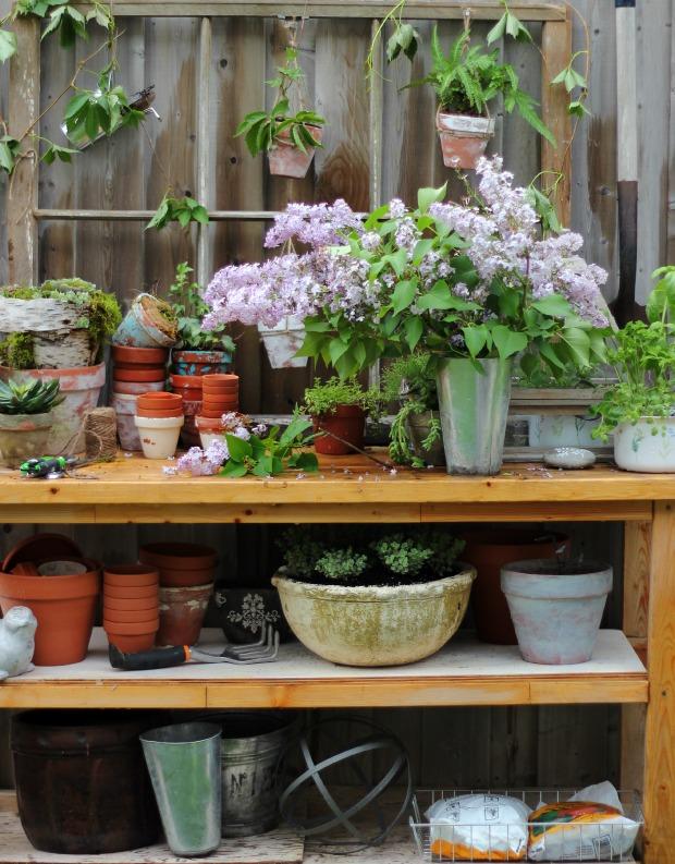 gardeningbenchcraftberrybush2