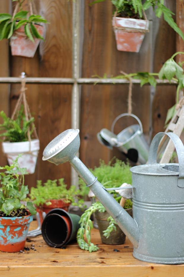 gardeningbenchcraftberrybushcan