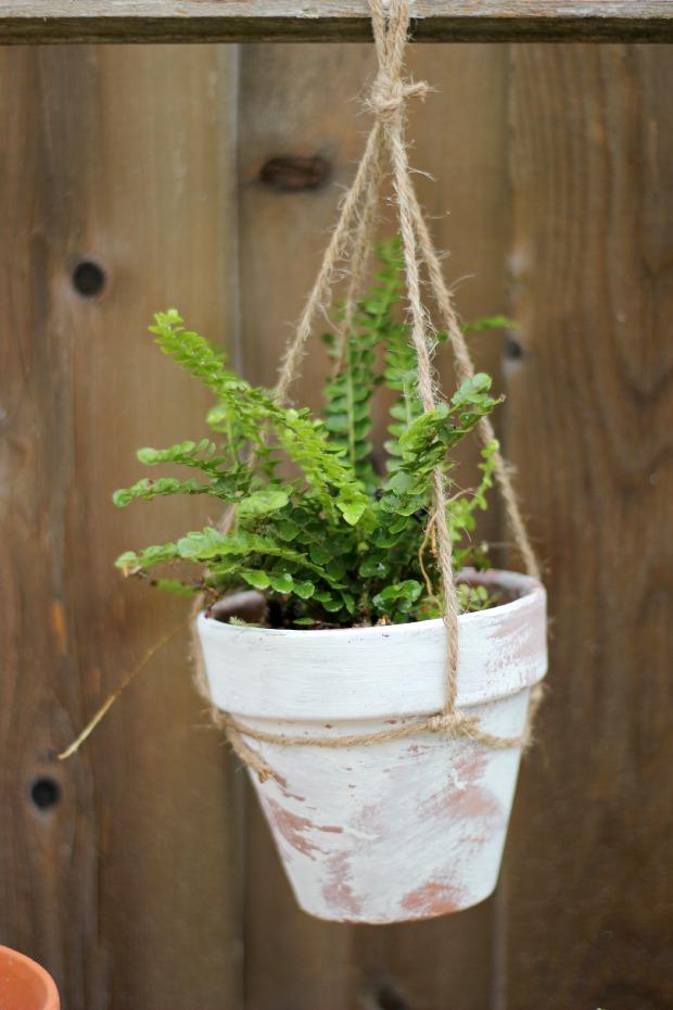 gardeningbenchcraftberrybushpot