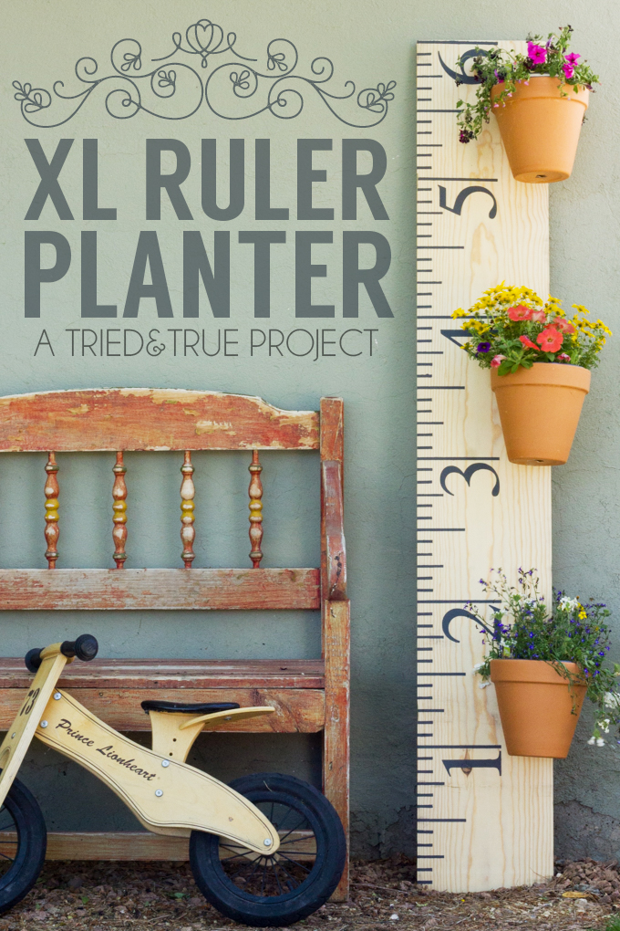 XL-Ruler-Planter-10