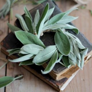 herbsagewreath