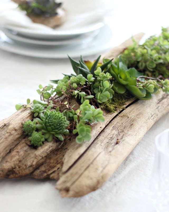 how to make driftwood planters