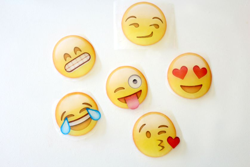 EmojinotebookDIYcraftberrybush2