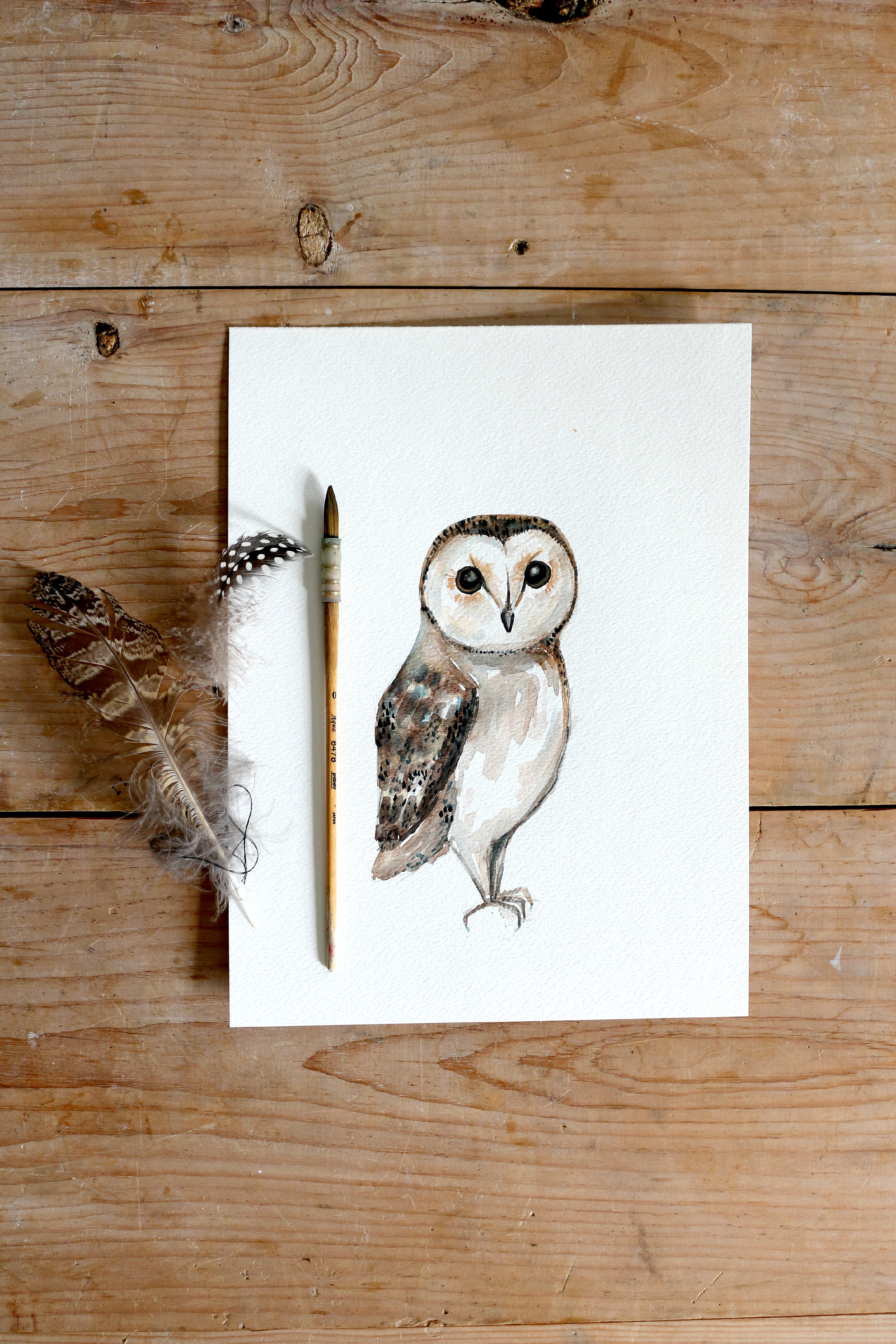 Diy Owl Painting And Sneak Peek Into Christmas Collection 2015