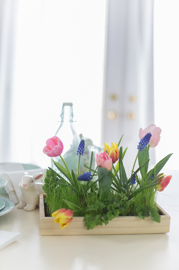Live Centerpiece for Easter and Spring