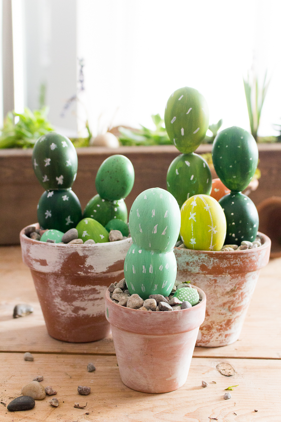 Egg Cactus Craftberry Bush  (1 of 1)-5