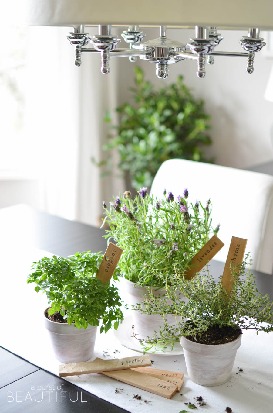 Simple DIY Herb Markers with Free Printables. on herb container gardens, herb garden layout design, herb garden design software, herb landscaping, herb knot garden design, herb garden clip art, herb garden ideas, herb garden design plans, herb garden planning,