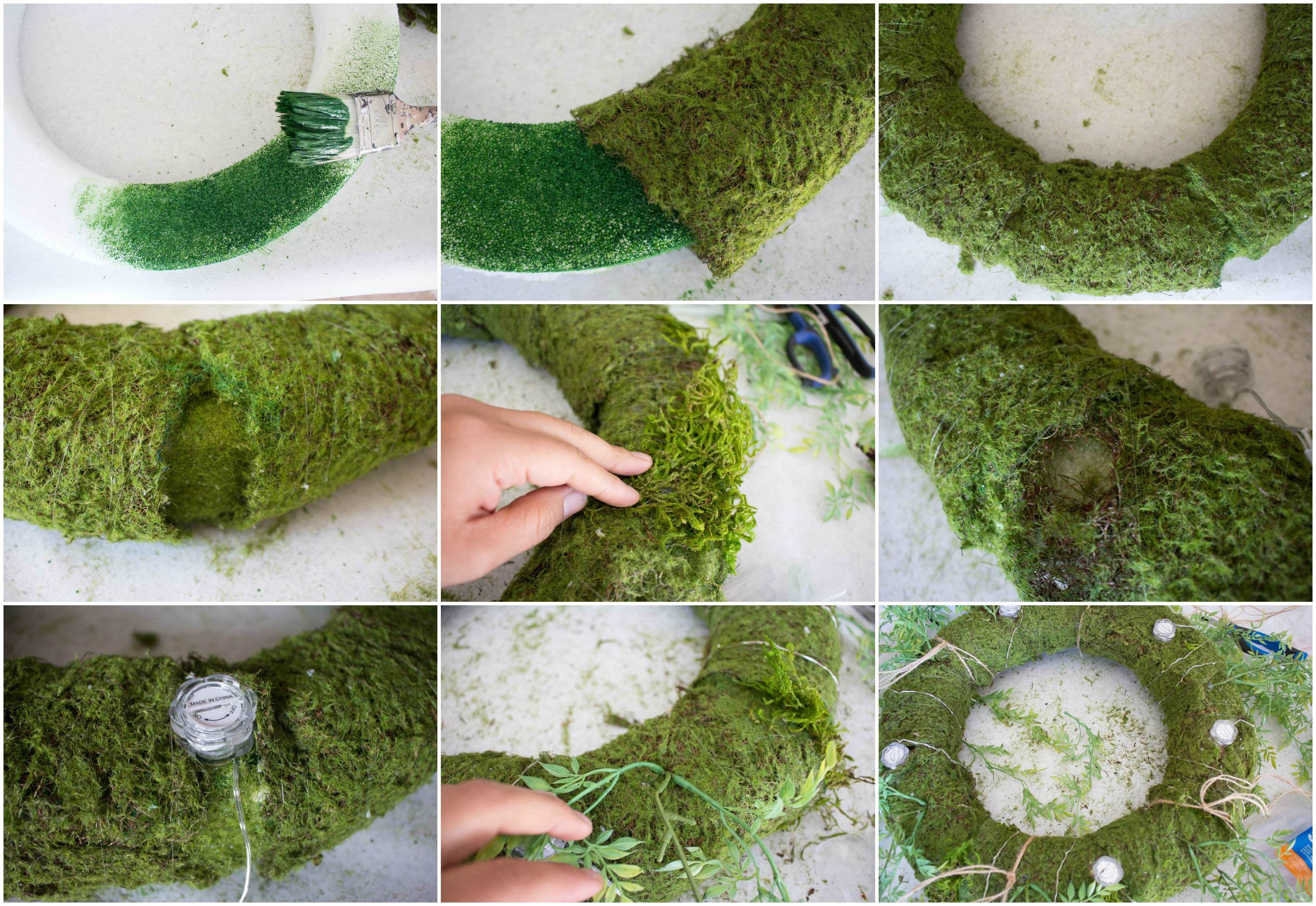 Can You Paint Moss