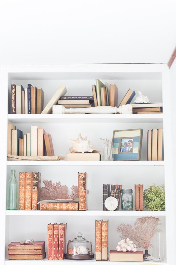 ShellsBooks-1