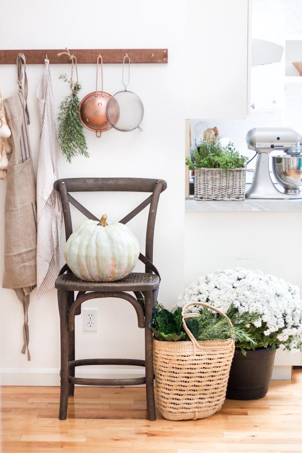 DIY Heirloom pumpkin