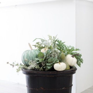 Fallplanter