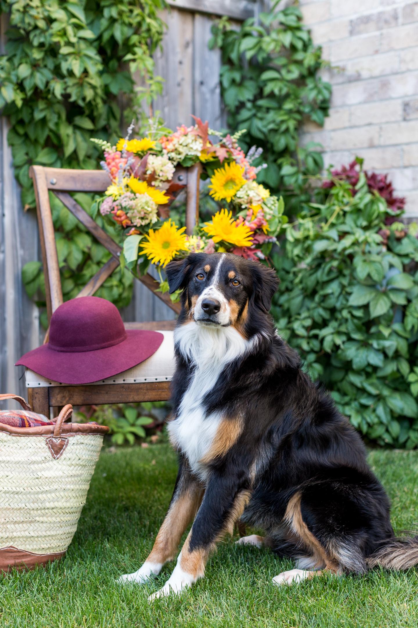 natural fall flower wreath-4