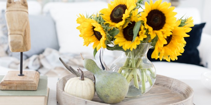 Easy Ways to Embrace Fall – Video