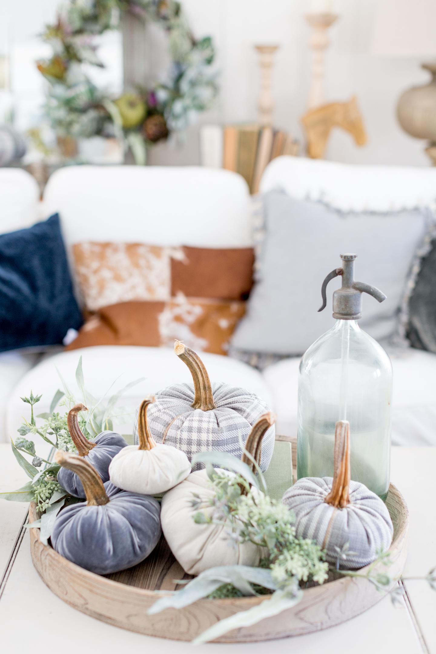 velvet pumpkins-2