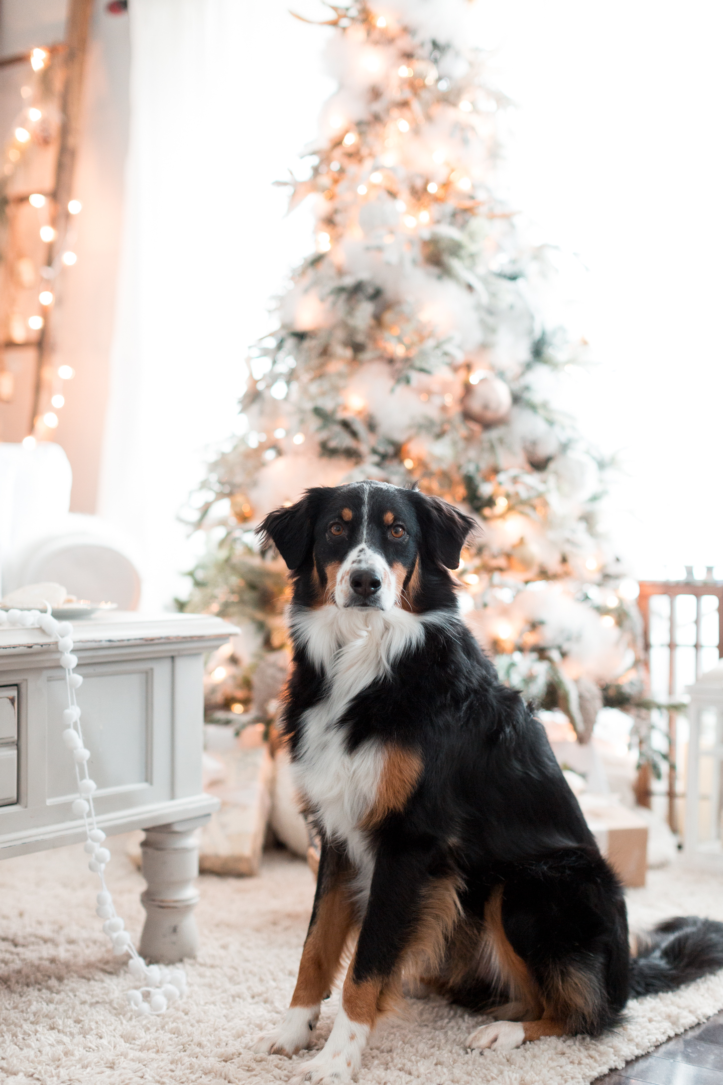 Christmas livingroom craftberrybush-7
