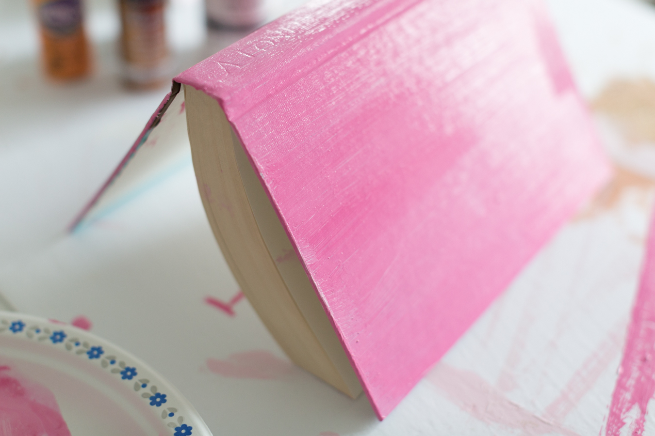 painteddisplaybookscraftberrybush-2