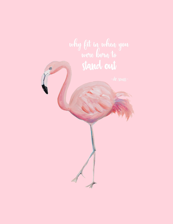 pinkflamingoprintablepinkbg