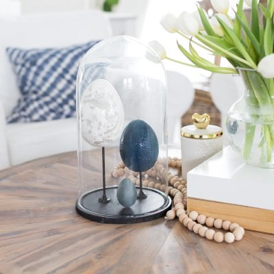 DIY Egg Specimen Cloche Display